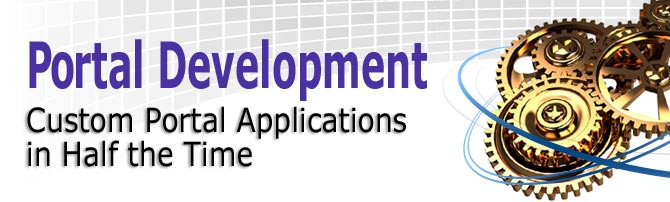 custom web portal Development